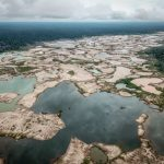 REPORTAGE. Reforester l'Amazonie, le pari fou du Pérou