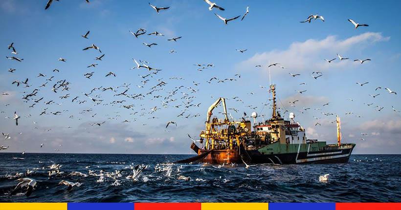 Les pêcheurs français assistent, impuissants, au pillage des chalutiers étrangers