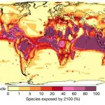 Le changement climatique risque de causer un effondrement brutal de la biodiversité à l'échelle mondiale