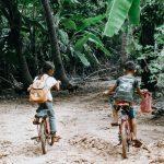 Pourquoi une reforestation mondiale permettra de restaurer la santé de la Terre