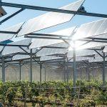 Montpellier French Tech. Défi climatique : ITK et SunAgri boostent l'agriculture résiliente