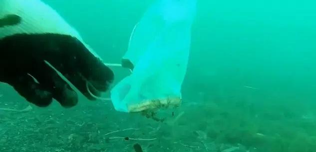 Les masques et les gants jetables polluent déjà la Méditerranée