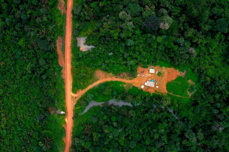 Amazonie. Pendant l'épidémie de coronavirus, la déforestation s'accélère