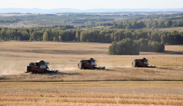 Économie.Le blé plus cher que le pétrole, la Russie décrète un embargo sur ses exportations de céréales