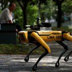 Dans un parc de Singapour, un chien robot pour faire respecter la distanciation sociale