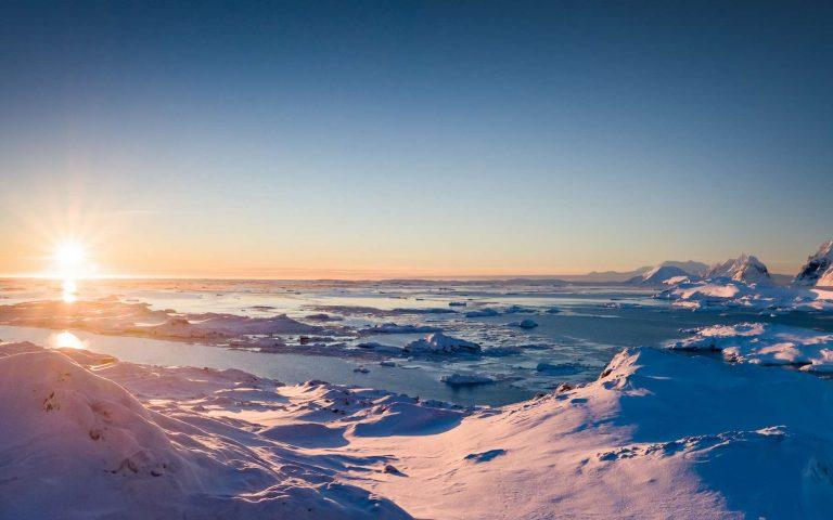 L'Antarctique se couvre d'algues vertes