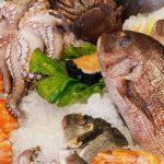 De nouvelles recherches révèlent l'étendue réelle de la corruption dans le secteur de la pêche