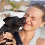 Pabete.com, une plateforme collaborative pour faire garder son animal ! Ne l'abandonnez pas !