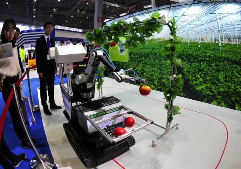 Manque de bras dans l'agriculture : la solution robotisation ?