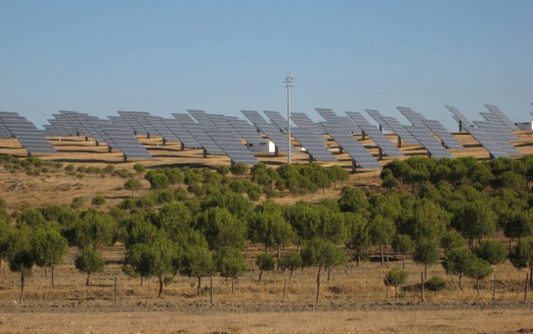 Portugal reaches record-low price in solar tender awarding 670 MW