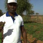 Il imagine une ferme 100% connectée unique en Afrique et c'est une vraie réussite