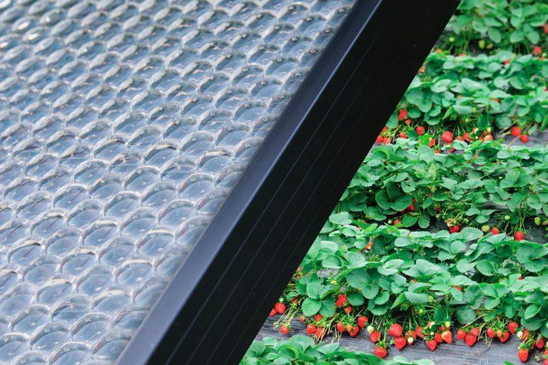 Suisse : rendement record pour la technologie photovoltaïque développée par Insolight