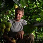 Avec le pionnier de la reforestation au Brésil