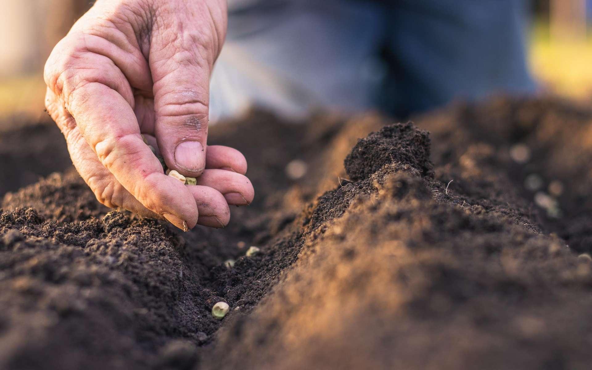 Tag « Erosion des sols »