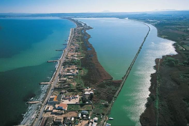 Une usine va produire du plastique avec les algues échouées de l'Étang de Berre