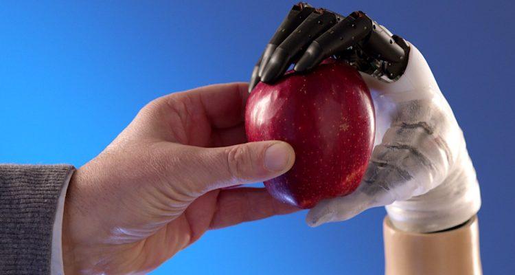 Une nouvelle prothèse de main biomimétique aux capacités proches de la main humaine