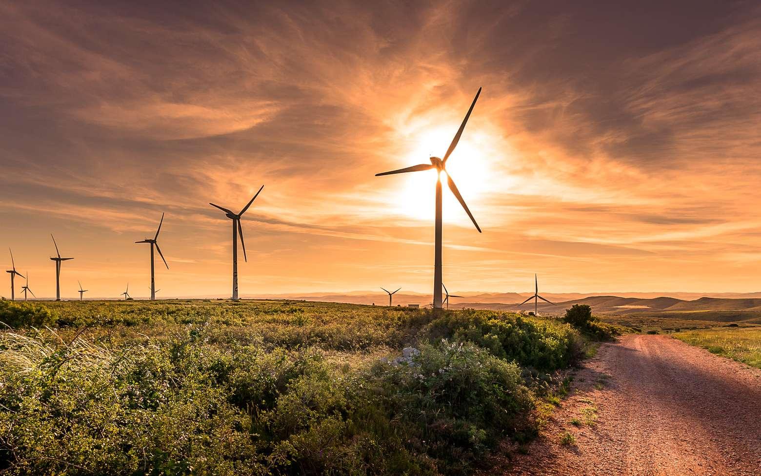 Reciclalia, la start-up qui recycle les pales d'éoliennes