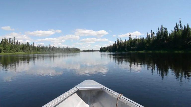 Une compagnie minière de lithium veut vider deux lacs et faire don des poissons