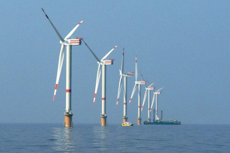 Parcs éoliens offshore : un paradis pour les poissons, crabes, moules et autres espèces marines