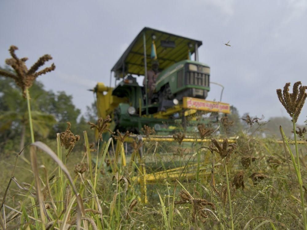 70% des terres agricoles appartiennent à seulement 1% des propriétaires !