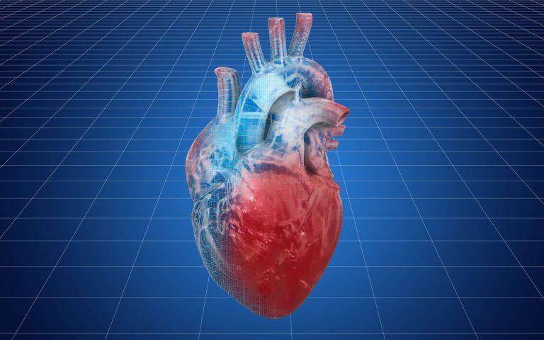 Le cœur artificiel Carmat est prêt à être commercialisé