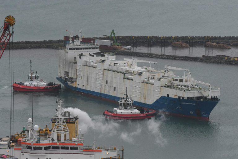 La Nouvelle-Zélande va arrêter toute exportation de bétail par bateau