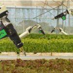 En Australie, l'IA et les robots remplaceront les travailleurs sur la première ferme entièrement automatisée