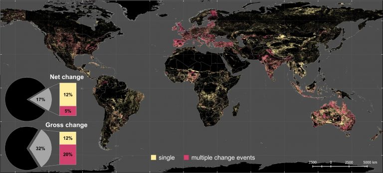 Global land use changes are four times greater than previously estimated