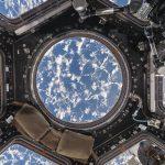 La NASA avance bien sur les technologies d'impression 3D d'organes artificiels dans l'espace