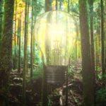 Au-delà de la durabilité, l'entreprise régénératrice