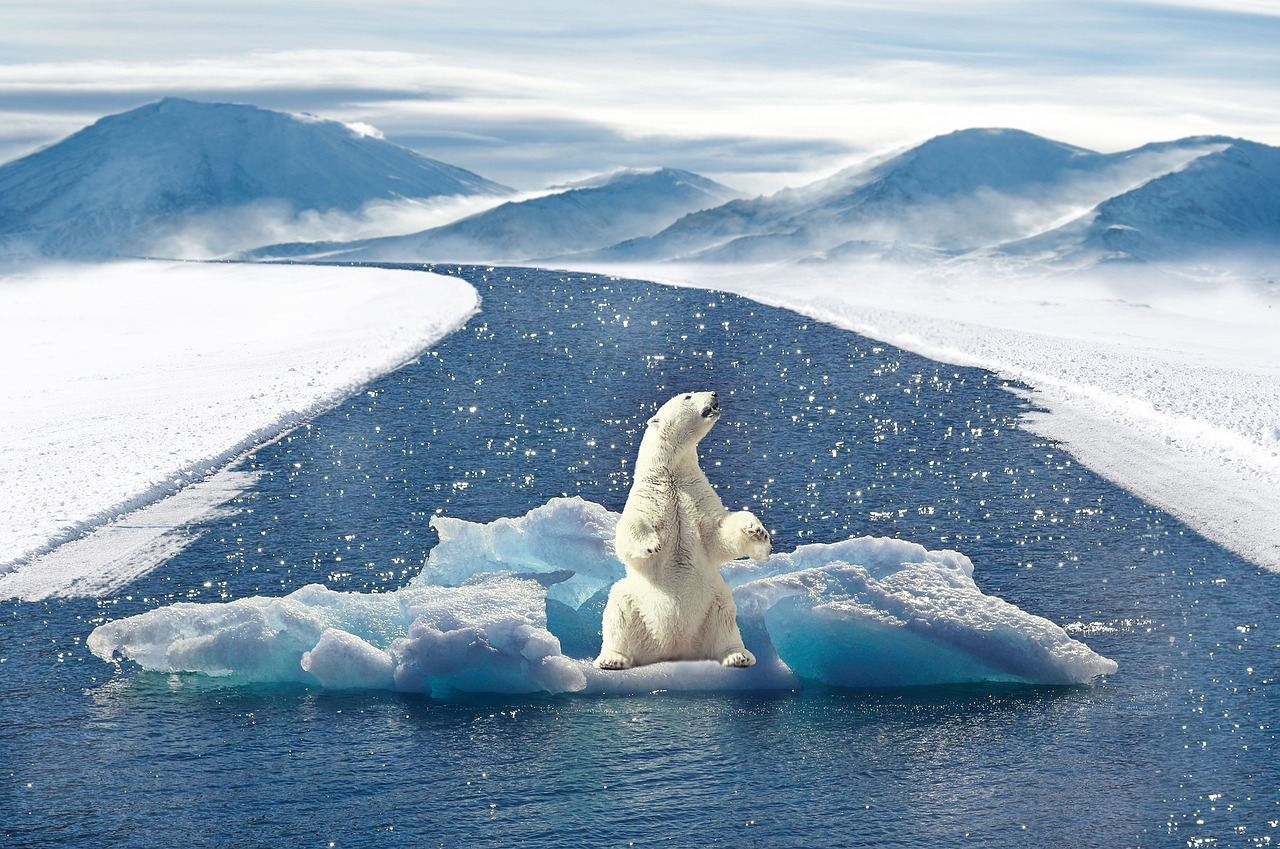 Un nouveau rapport alerte sur les bouleversements en cours dans l'Arctique
