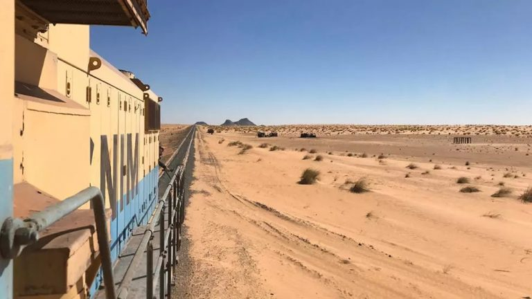 Populations du Sahara: de plus en plus nombreuses et urbaines