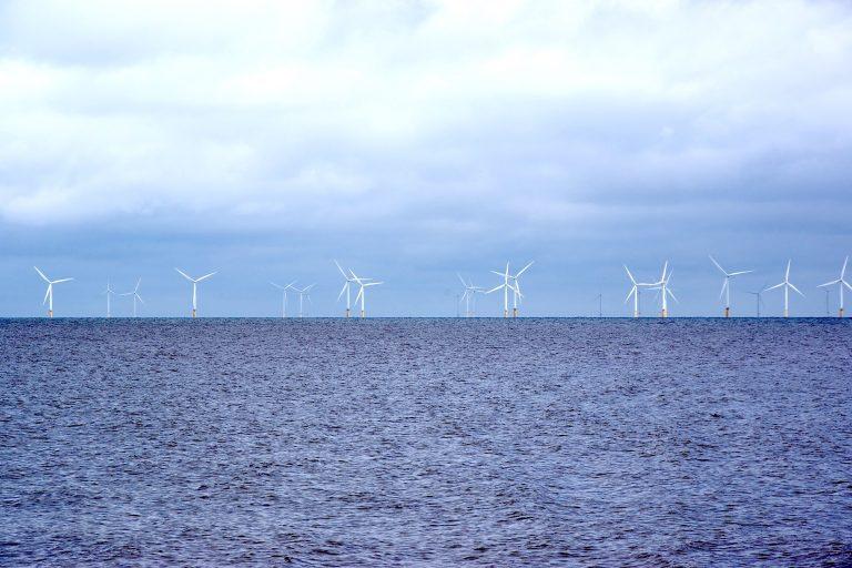 Joe Biden ouvre la côte californienne aux parcs éoliens