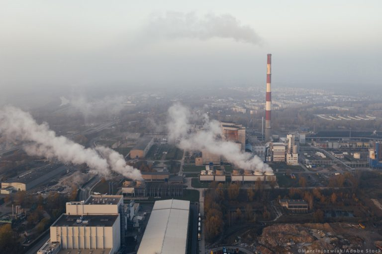 EU Climate Law: MEPs confirm deal on climate neutrality by 2050