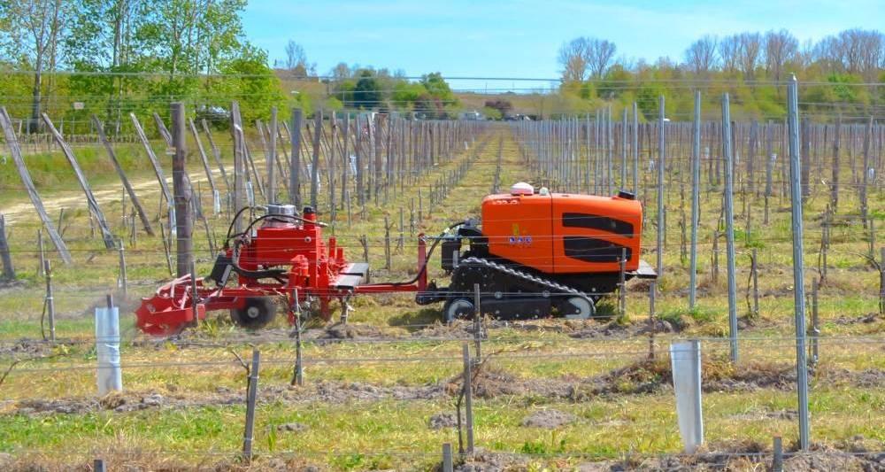 Vignes : Agreenculture déploie ses robots pour limiter l'usage des désherbants