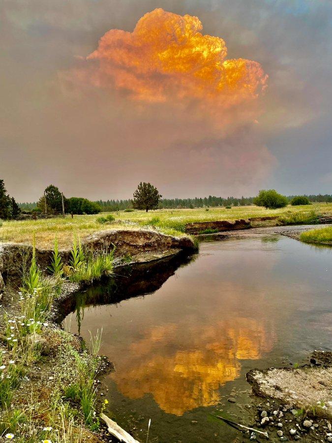 États-Unis : cet incendie a pris tellement d'ampleur qu'il crée sa propre météo !