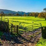 L'agrivoltaïsme gagne ses galons et se structure