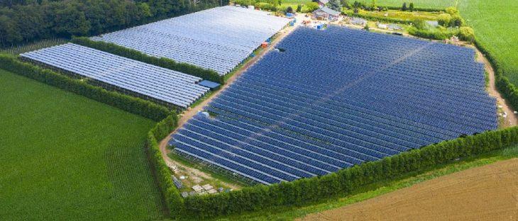 Agrivoltaïsme : BayWa r.e. met en service un projet de 2,7 MWc aux Pays-Bas