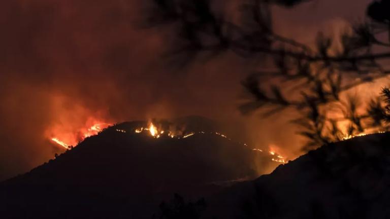 Chypre : au moins quatre morts dans «le plus vaste» incendie depuis des décennies, selon le président