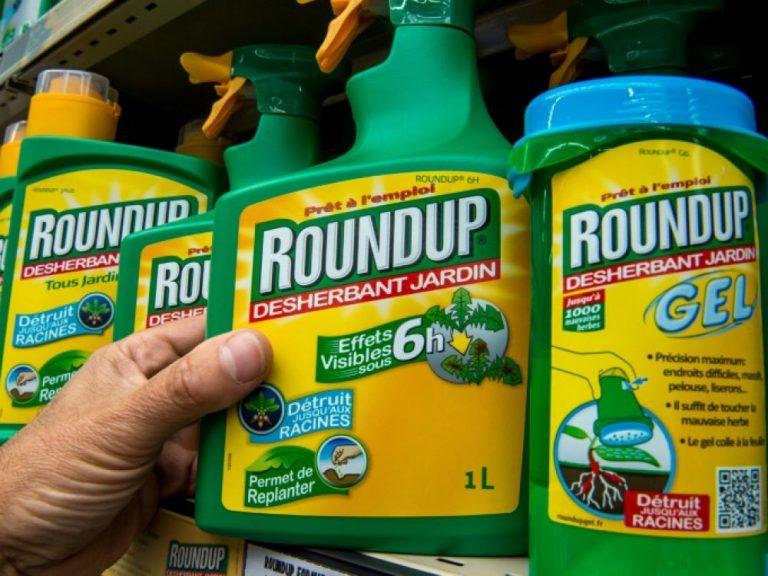Cancers liés au Roundup : Bayer perd de nouveau en appel