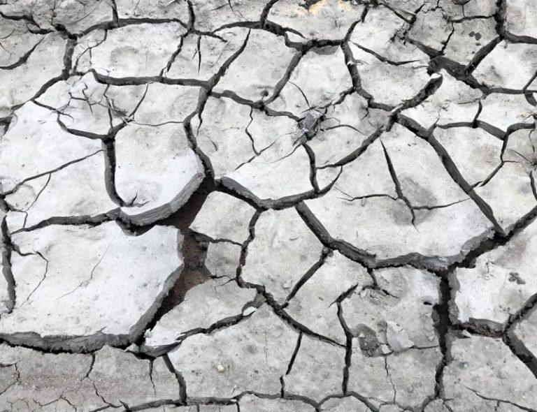 Climat: comment continuer à assurer les entreprises ?